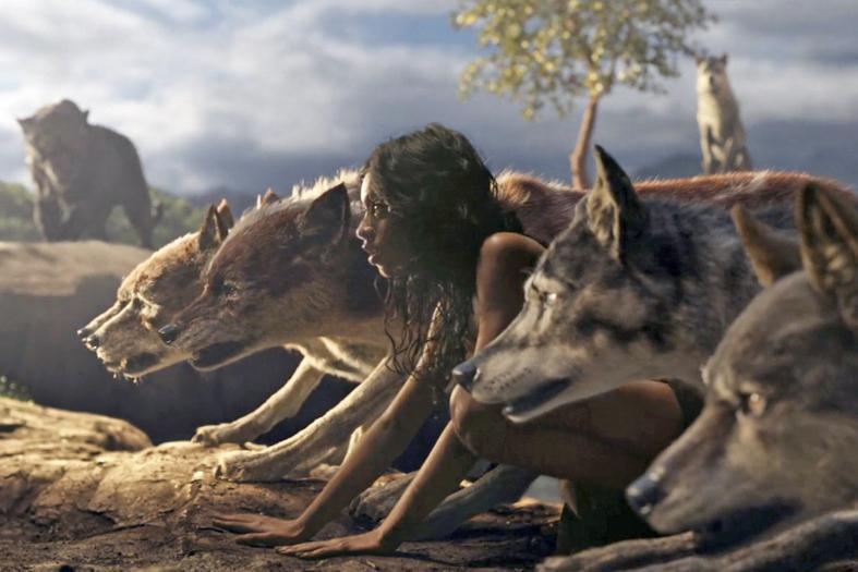Mowgli, Widows