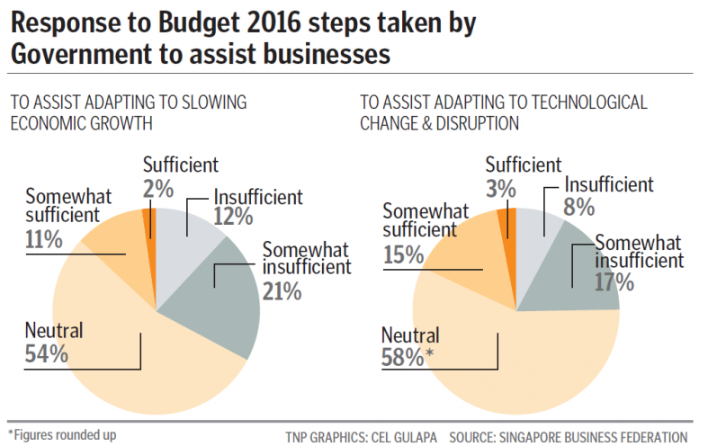 The steps taken by Government to assist businesses.
