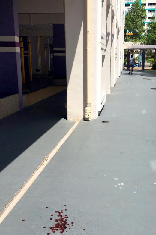 Woman injured after Pasir Ris crow attack