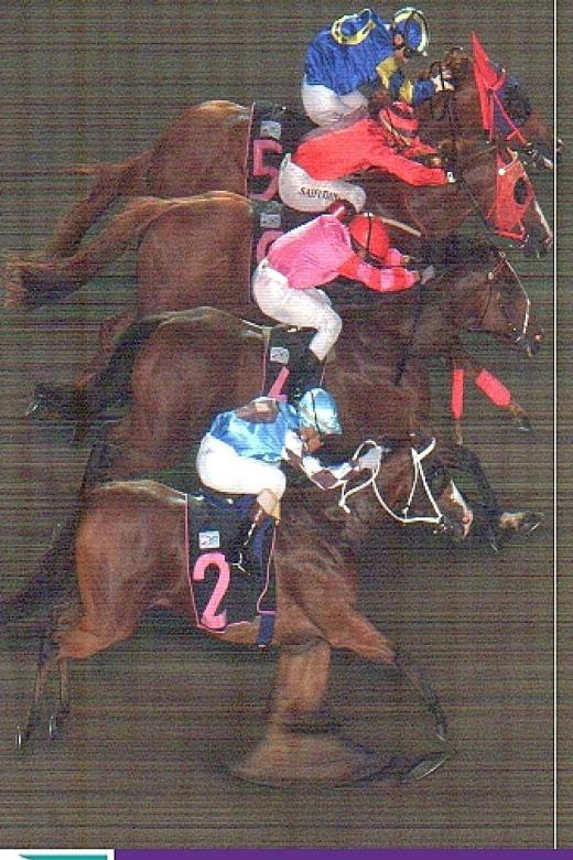 Southern Man wins in 4-horse thriller