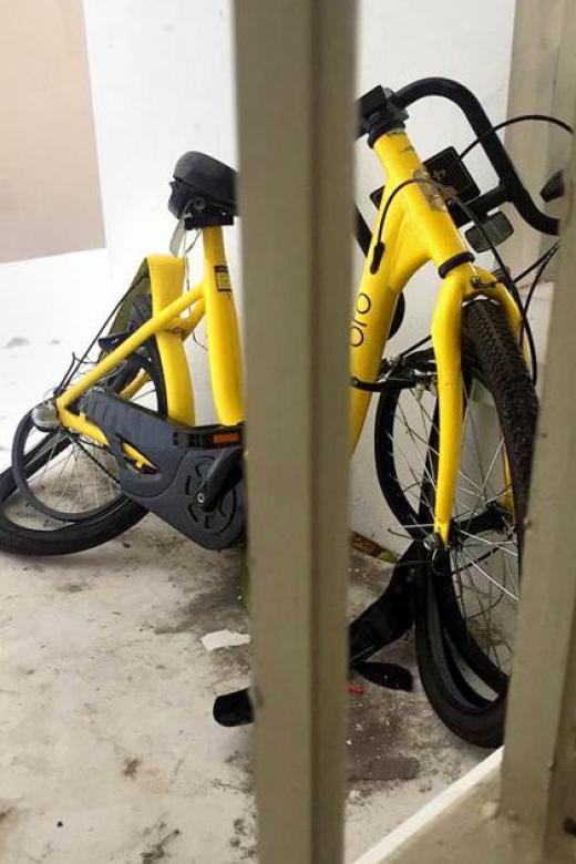Man held for allegedly throwing bike from flat