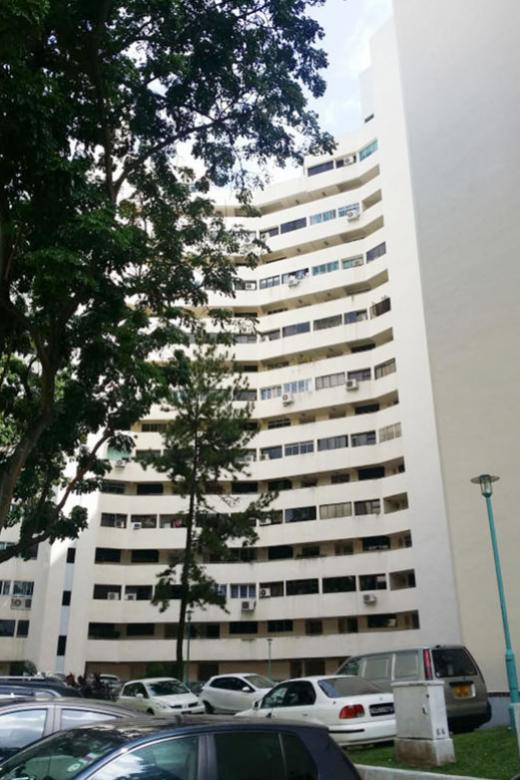 Tensions rise amid Pine Grove's bid to sell en bloc