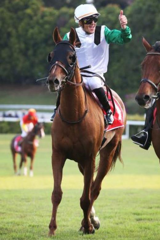 Soumillon sets new European record  with 306 winners