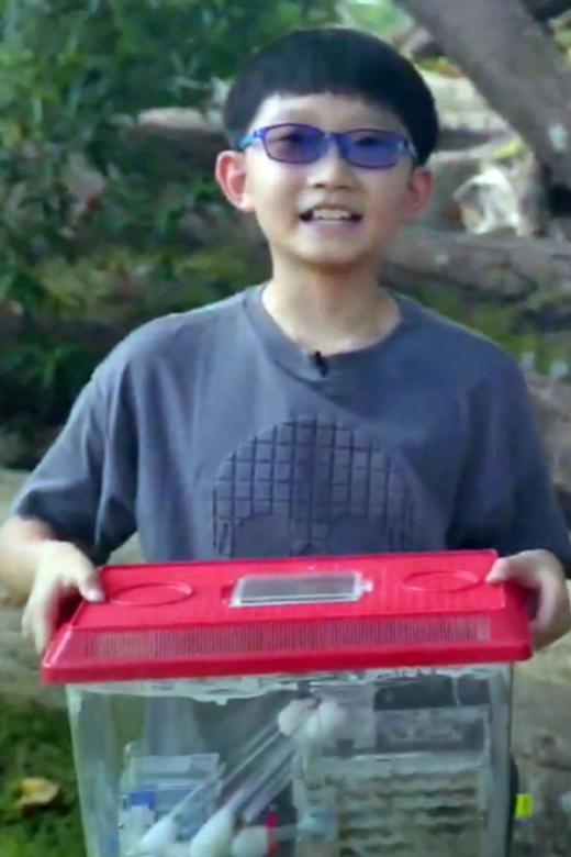 Boy, 11, starts journey to net zero lifestyle to combat global warming