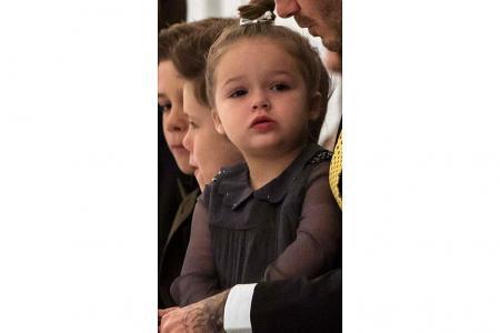 Little Royalty
