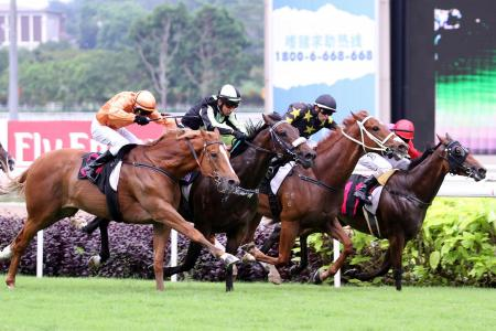 Sunday's Singapore Stipes' report highlights