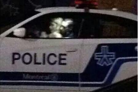 Policeman caught having sex in cop car