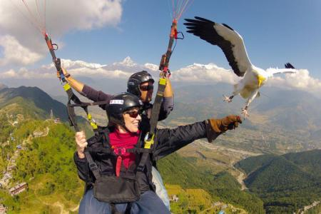 Nepal's Parahawking Project allows you to soar with the birds