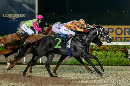 Friday's Singapore stipendiary Stewards' report highlights