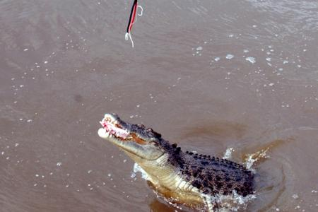 Man snatched off his boat by crocodile