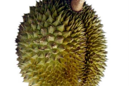 Woman injures another with durian shell
