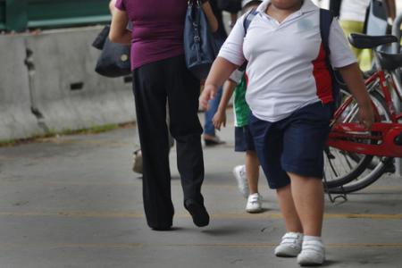 Single parents raise fatter children?