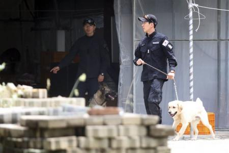 Ferry family boss eludes South Korea's biggest and most bizarre manhunt