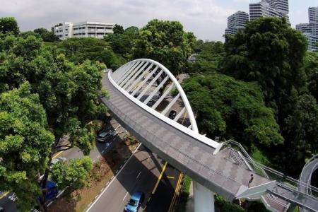 Drone's eye view: Henderson Waves bridge making waves
