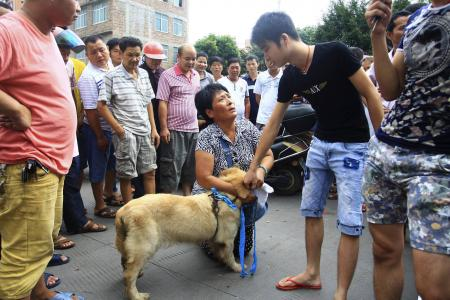 Vendors, activists face off at China dog meat festival