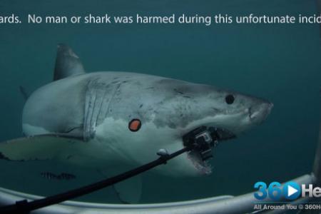 Shark attacks special 360-degree camera
