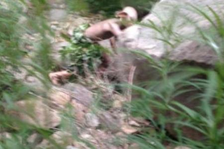 Peeing 'Gollum' sighted in Beijing mountains