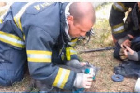Firefighters save cat using tiny oxygen mask