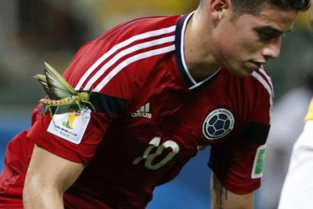 James Rodriguez and the giant grasshopper