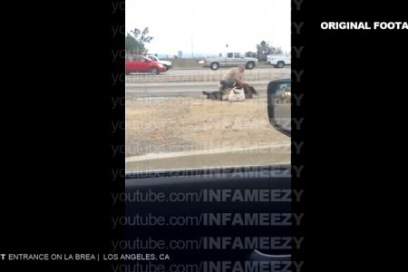 Video: American cop repeatedly punches woman on an expressway