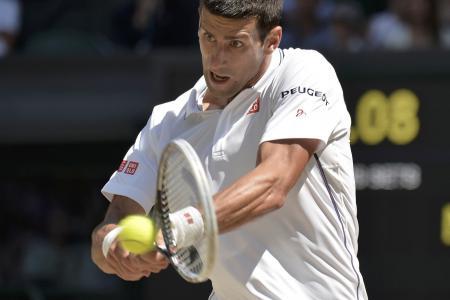 Federer and Djokovic to meet in Wimbledon final