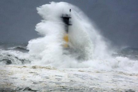 Typhoon Neoguri makes waves around the web