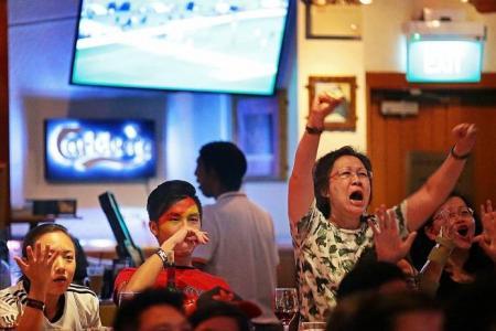 German fans celebrate at TNP's 'live' screening