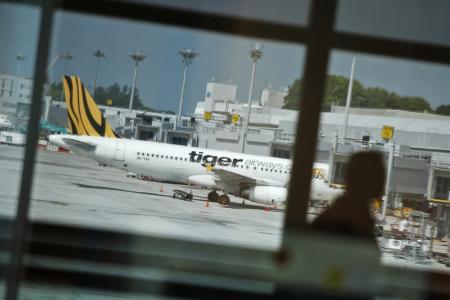 Bird-hit Tiger Airways jet lands safely in India