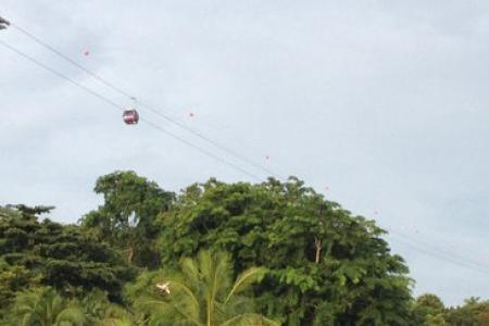 UPDATE Empty Sentosa cable car falls during testing of new line, no one hurt
