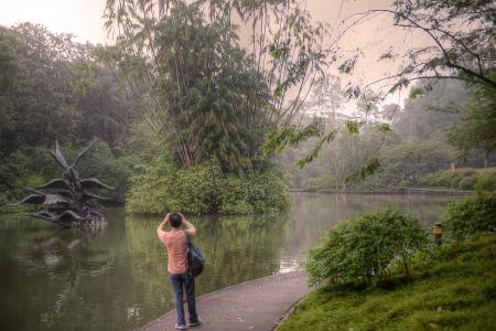 6 reasons why Botanic Gardens should be a Unesco World Heritage Site