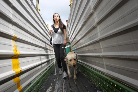 Woman in Zara-guide dog altercation quits