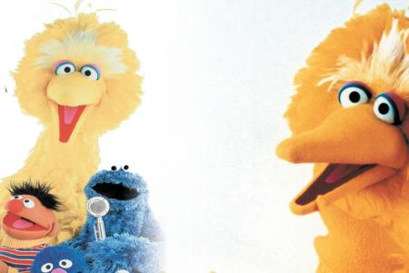 Big Bird actor made a dying boy's last day one of his happiest