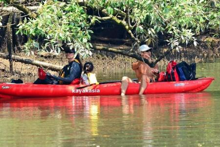 Trio in kayak at Sungei Buloh, as crocs spotted nearby
