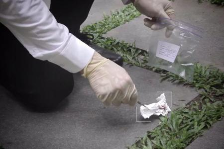 Use DNA to name & shame litterbugs