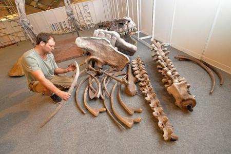 Bringing bones to life