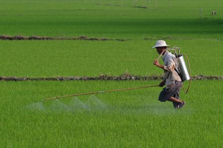 Four 'left behind' kids die after drinking pesticide