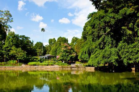 Singapore Botanic Gardens named UNESCO heritage site