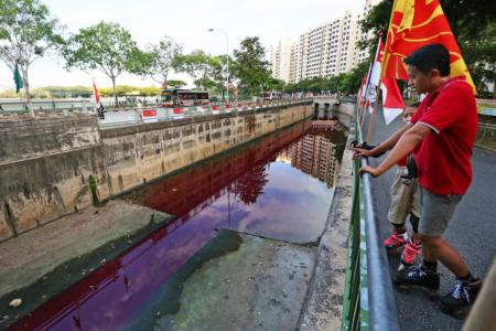Why is there blood-red water in Jurong West canal?
