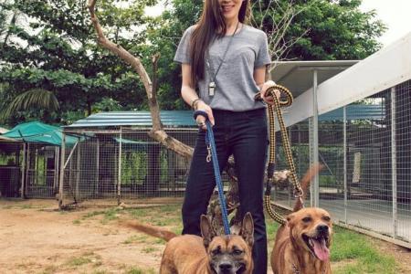 Socialite Kim Lim launches fund-raising calendar for animal welfare groups with celeb friends