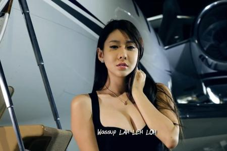 Lingo Lingo MV: NLB says only logos need to be removed from video