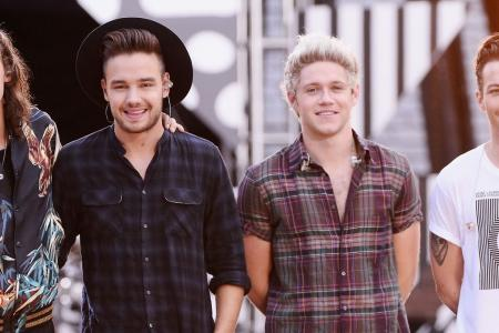 What could One Direction be planning to do during their hiatus?