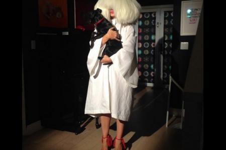 Sia takes bold step into movie directing