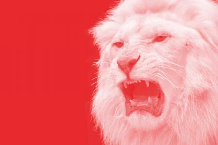 Leonard Thomas: Next FAS president must be fearless