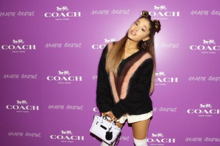 Own an Ariana Grande bag