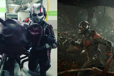Local Ant Man praised by the director of Ant Man