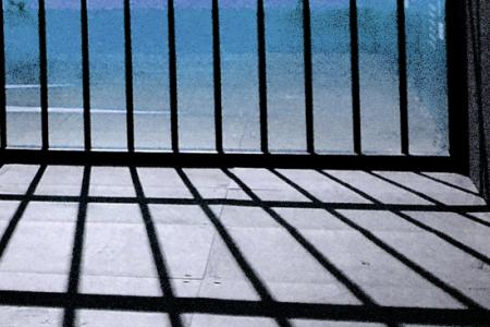Drunk jailed for molesting flight attendant