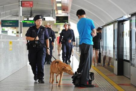 Experts: Singaporeans equipped to handle aftermath of terrorist attack