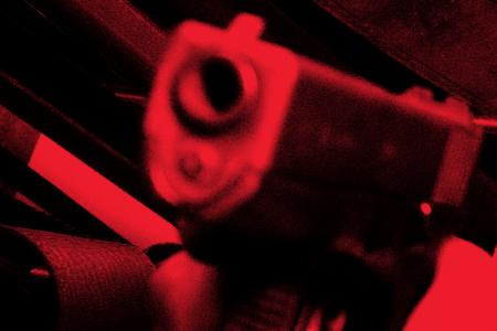 Four attempt gun shop robbery with BB guns