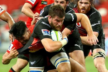Sunwolves lose, but new Super Rugby franchise improving all the time