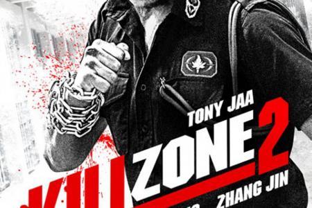 Poster Poser: Kill Zone 2